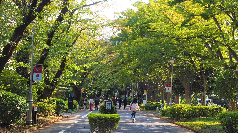 国立大学法人 千葉大学|Chiba University